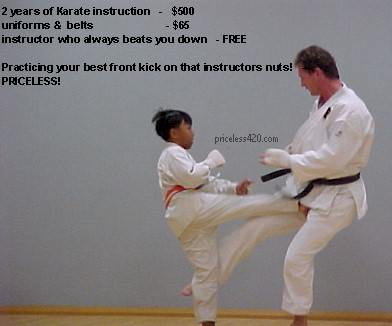 priceless_karate.jpg