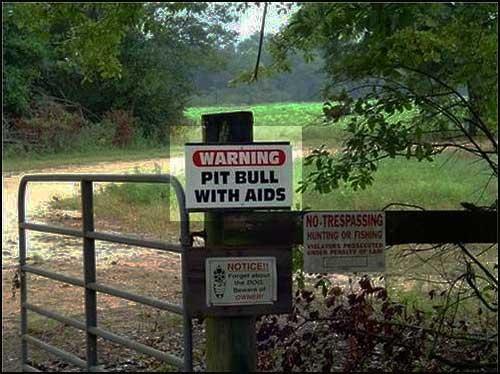 hund-warnung.jpg